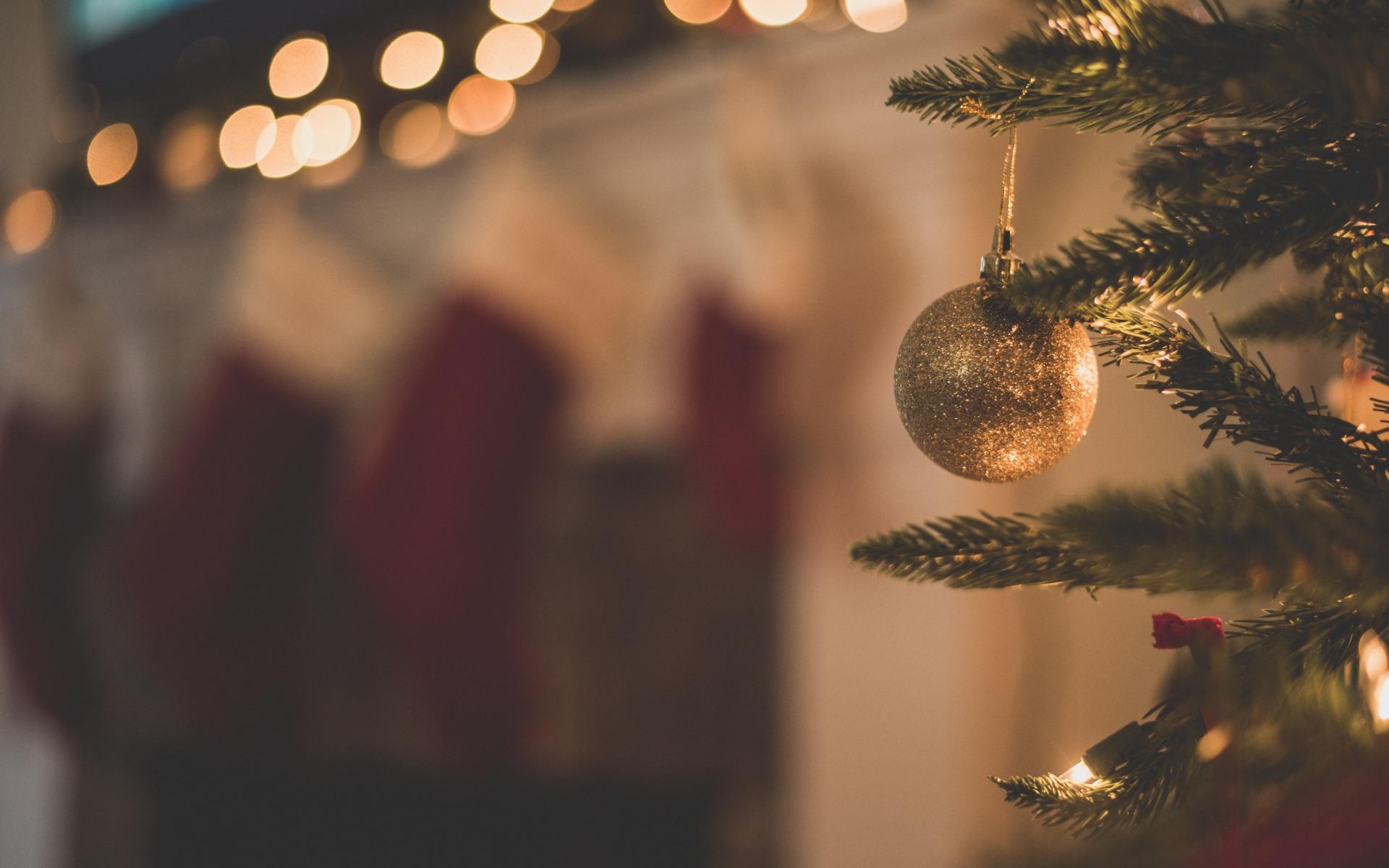 Картинки Рождественская елка, рождественские украшения, филиал, рождество фото и обои на рабочий стол
