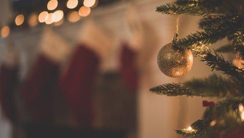 Рождественская елка, рождественские украшения, филиал, рождество