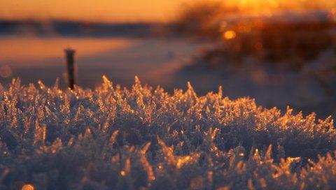 Мороз, мороз, блеск