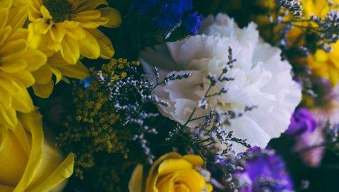 Цветы, букет, композиция, красочные
