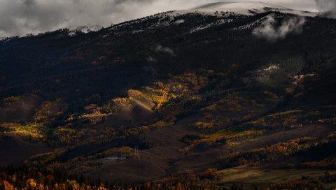 Холм, долина, деревья, туман