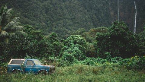 Горы, деревья, путешествия, автомобиль