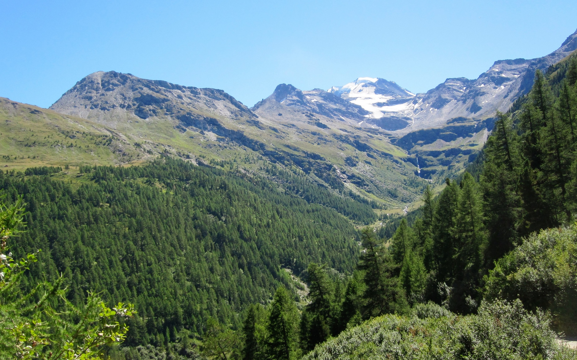 Картинки Швейцария, Альпы, горы, деревья фото и обои на рабочий стол