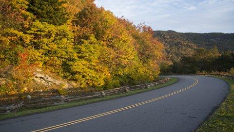 Осень, дорога, поворот, маркировка