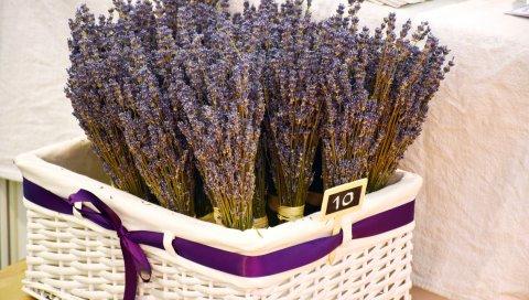 Лаванда, корзина, цветы, аромат