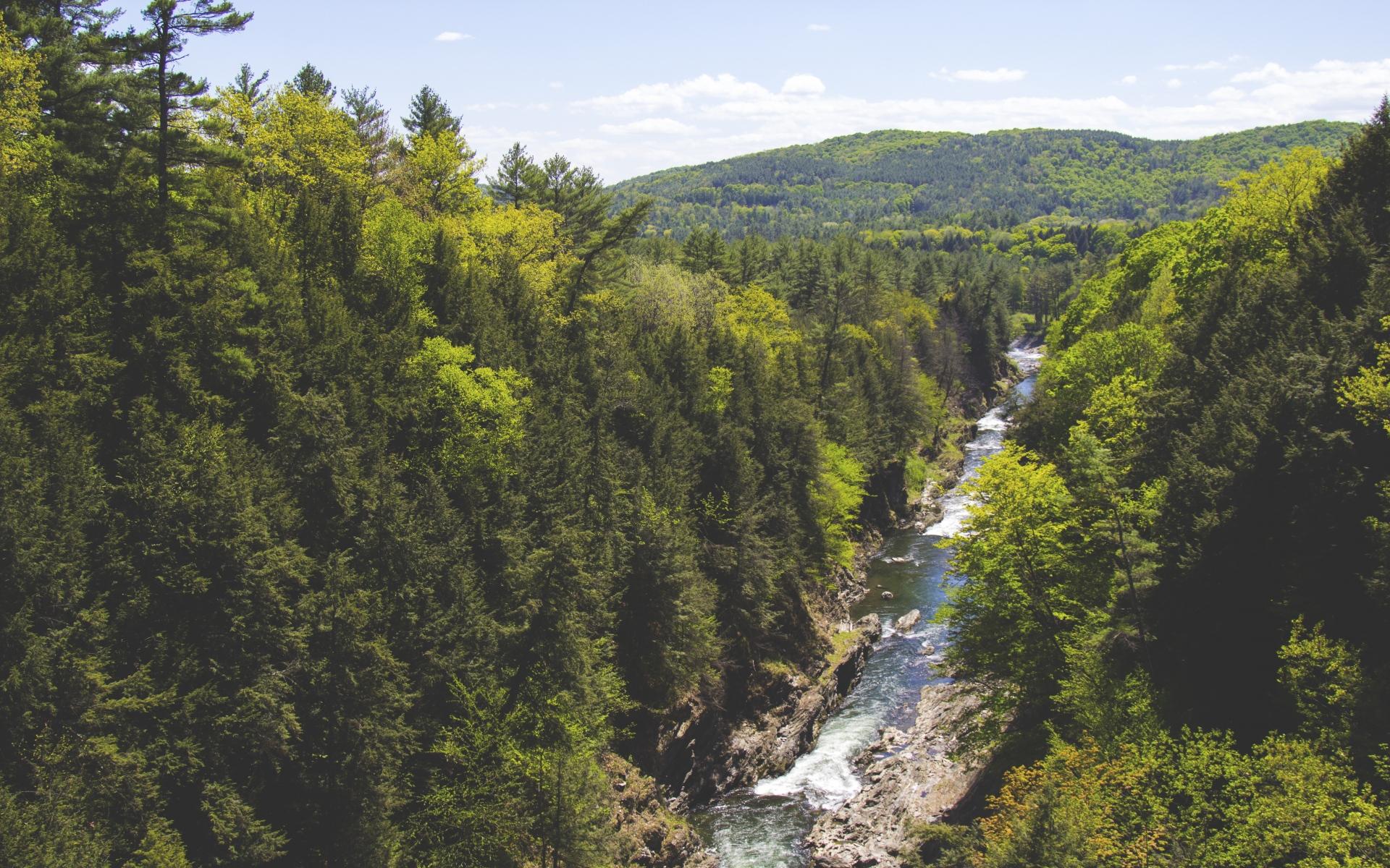 Картинки Деревья, ручей, река, гора фото и обои на рабочий стол