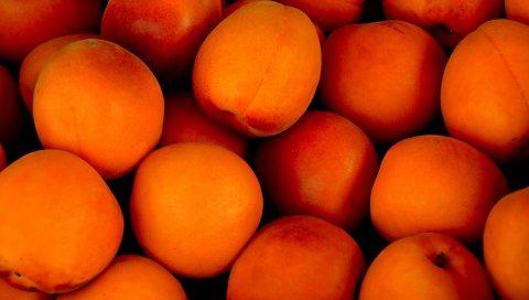 Абрикосы, фрукты, спелые