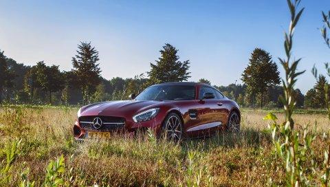 Mercedes, amg, вид сбоку, трава