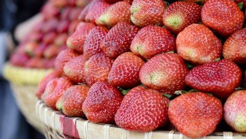 Клубника, ягода, спелая, корзина