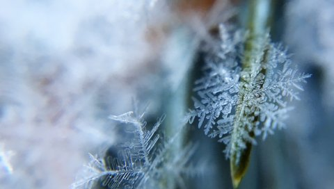 Снежинки, лед, форма, крупный план
