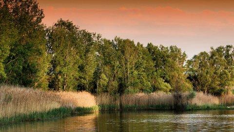 Закат, озеро, трава, деревья