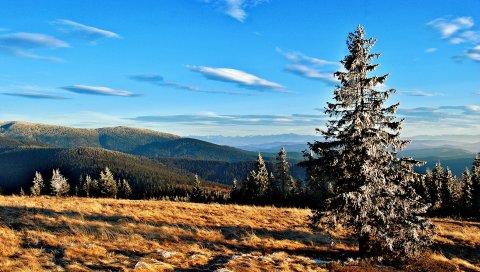 Горы, деревья, трава, осень, небо