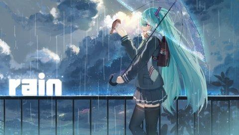 Haraguro вы, вокалоид, hatsune miku, девушка, зонтик, дождь