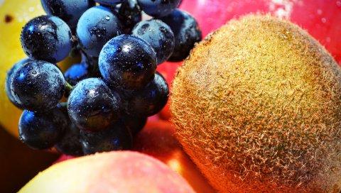 Киви, виноград, фрукты