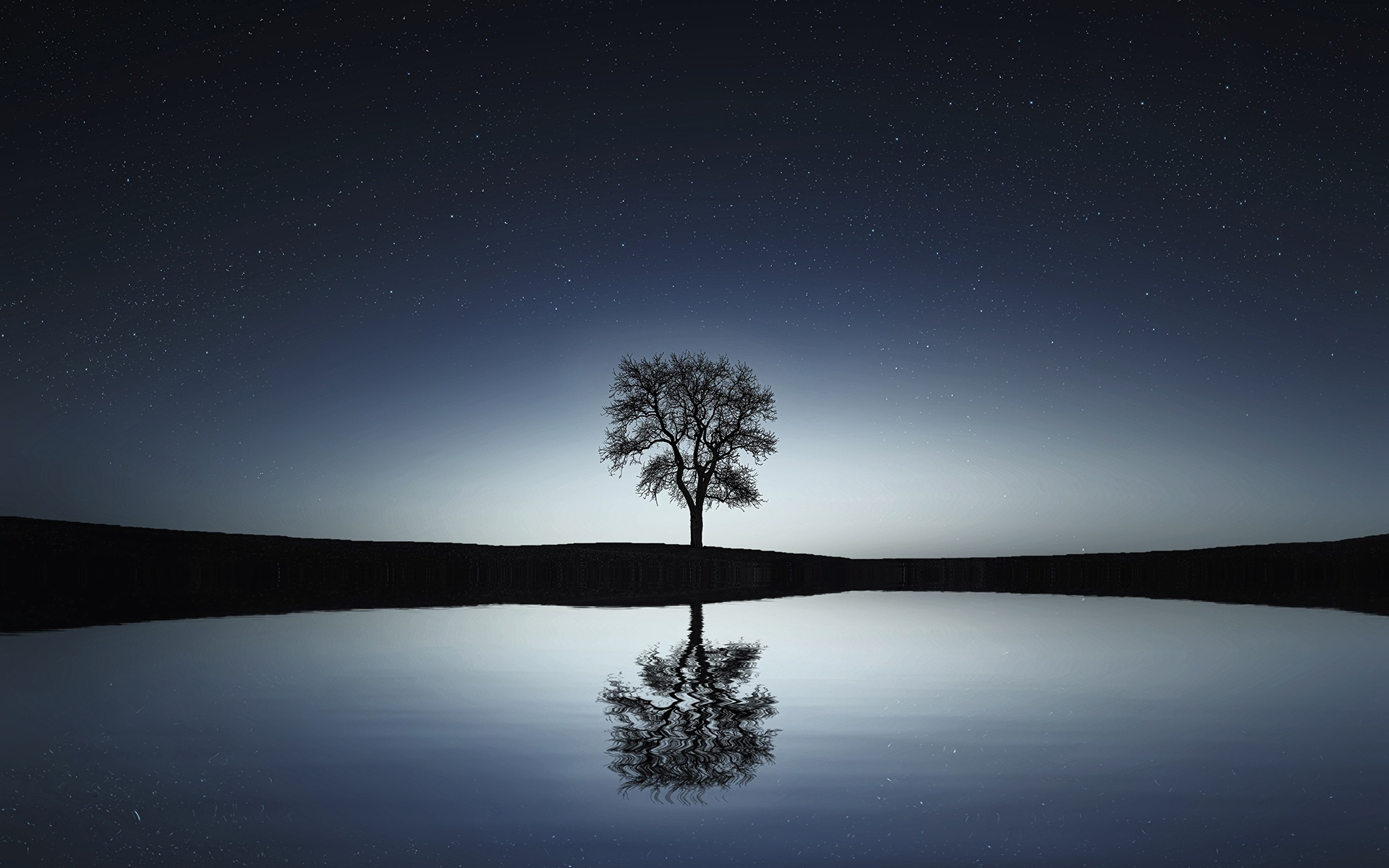 Картинки Дерево, отражение, вода, ночь фото и обои на рабочий стол