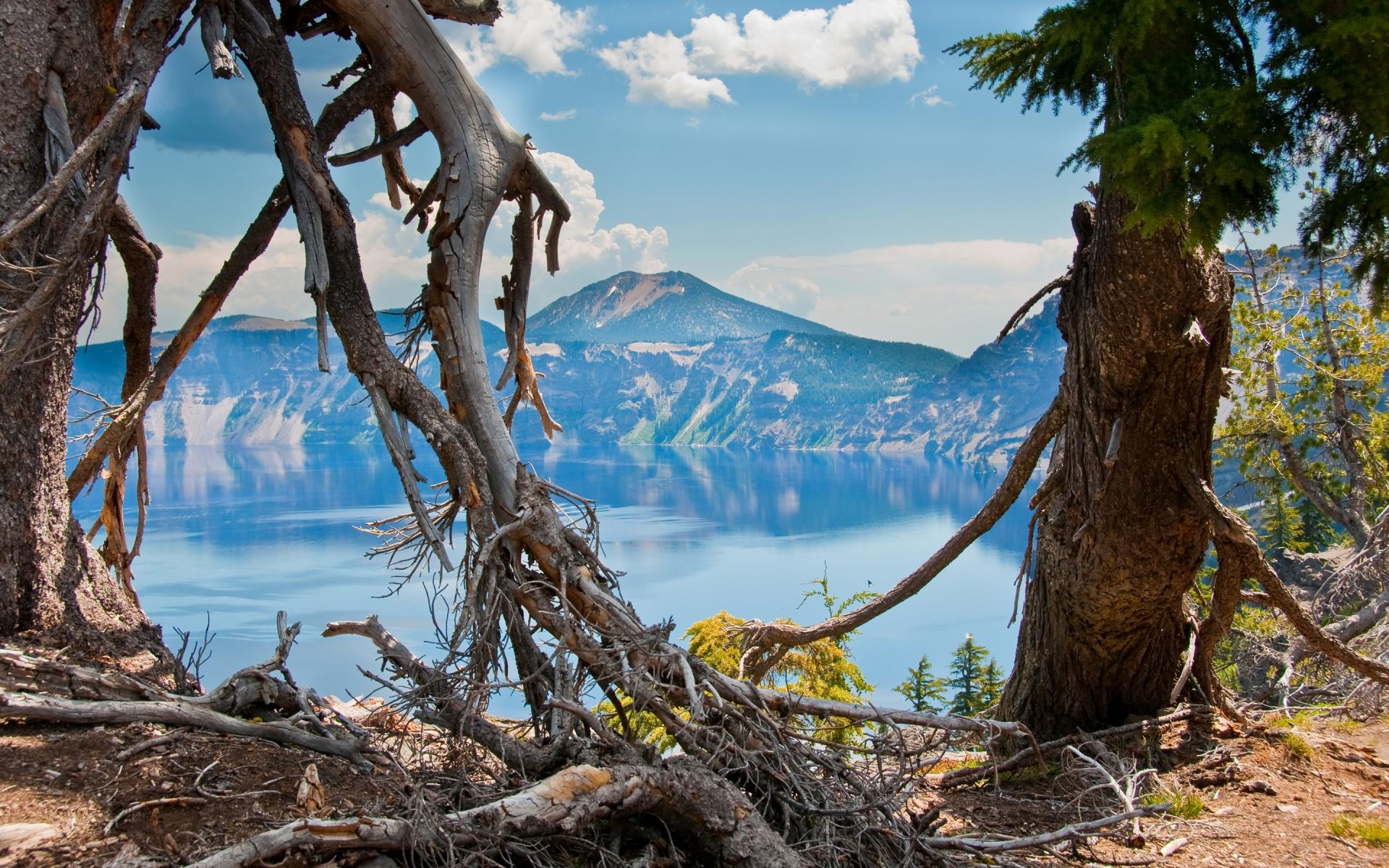 Картинки Орегон, Соединенные Штаты, горы, деревья фото и обои на рабочий стол
