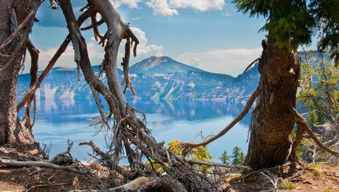 Орегон, Соединенные Штаты, горы, деревья