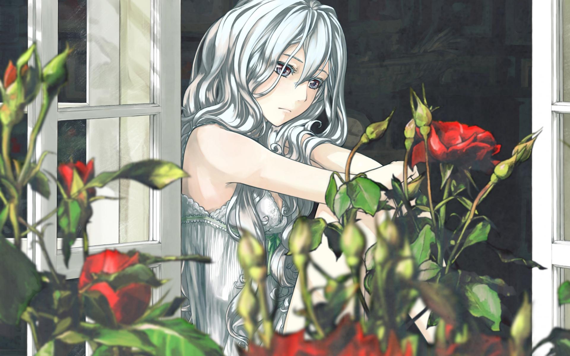 Картинки Девушка, аниме, окно, розы фото и обои на рабочий стол
