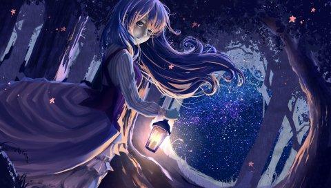 Девушка, аниме, фонарь, лес, ночь