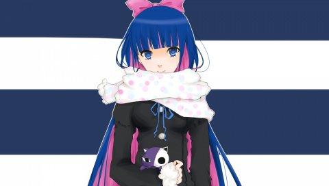 Колготки и чулок с подвязкой, анархический чулок, девушка, аниме