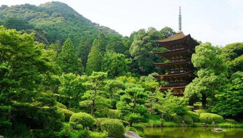 Япония, Ямагучи, Пруд, Деревья