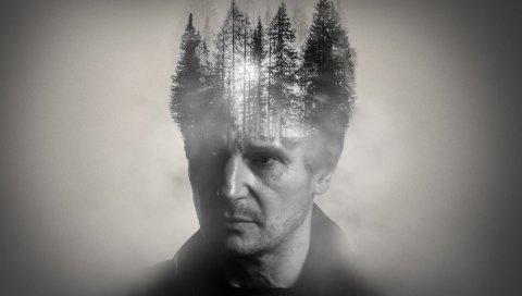 Liam neeson, двойное воздействие, лес, мудрый