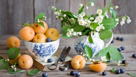 Фрукты, ягоды, абрикосы, черника, жасмин