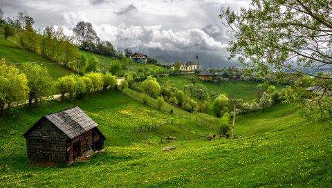 Румыния, Трансильвания, горы, трава, лето