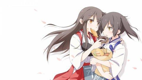 Акаги, кага, аниме, девушка, пончики