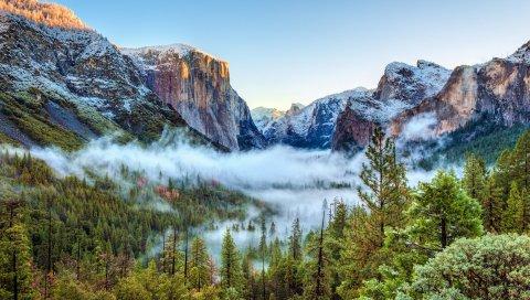 США, национальный парк Йосемити, Калифорния, горы, туман, деревья