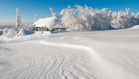 Зима, строительство, снег, деревья, снег, дрифты
