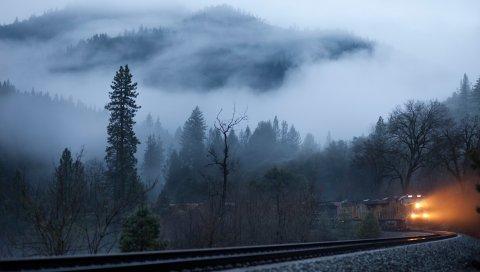 Поезд, туман, железная дорога, свет, деревья