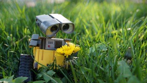 Wall-e, робот, трава, цветок