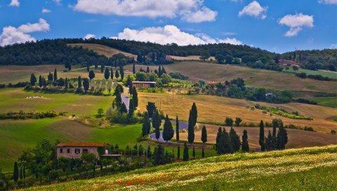 Лукка, тоскана, италия, природа, деревья
