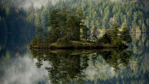 Лес, озеро, отражение, остров, туман