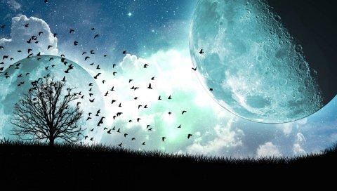 спутник, луна, птицы, искусство, дерево, летающий