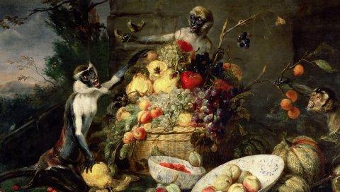 Франки snyders, обезьяны крадут фрукты, картину, барокко, флангеров