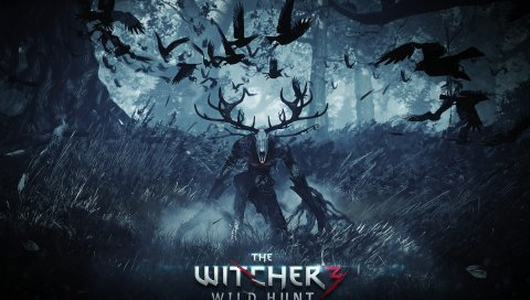 Ведьмак 3 дикой охоту, заключительная часть , PC, PlayStation 4, Xbox один