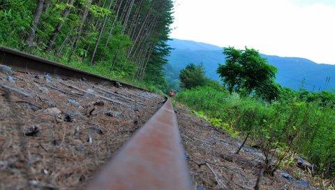 железная дорога, трава, поезд