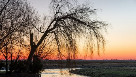 река, деревья, трава, закат
