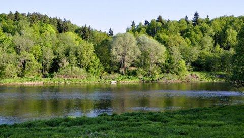 река, трава, деревья, берег
