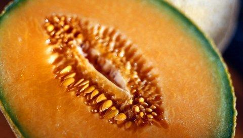 дыня, фрукты,Семена