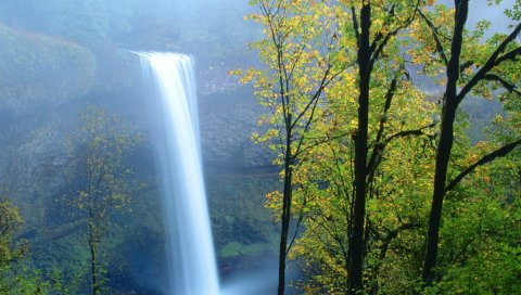 водопад, дерева , лето, свет