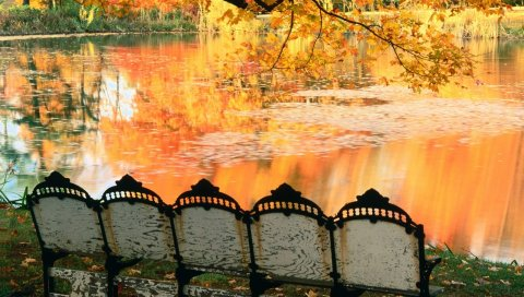 пруд, скамейки, осень, отражение