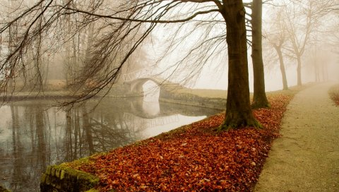парк, осень, листва, деревья, туман, мост