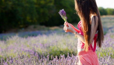 девушки, платье, поле, цветы