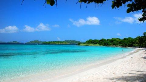 мальдивы, тропические, пляж, песок, лето, пальмы