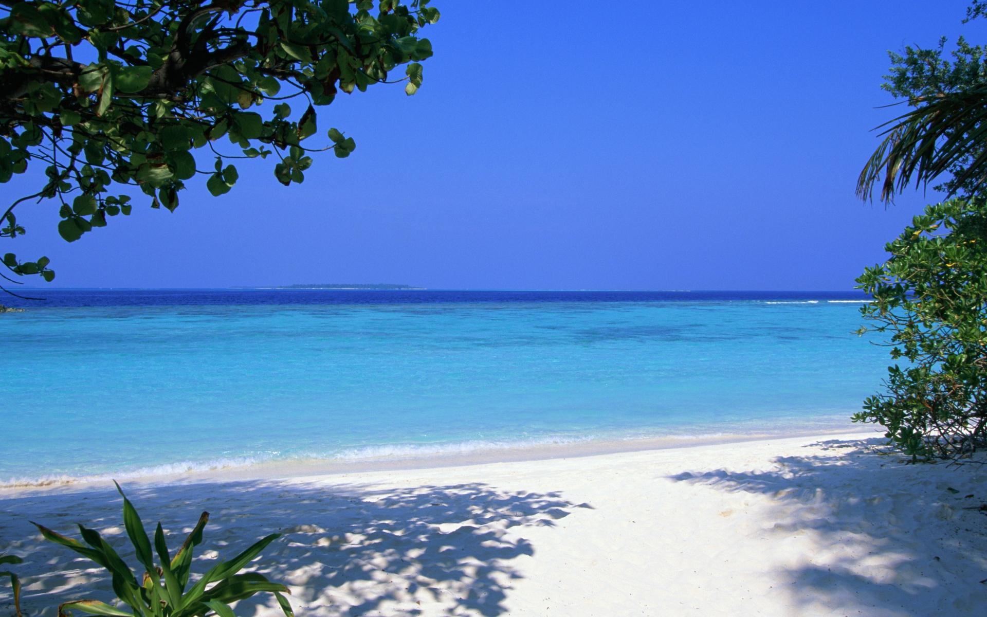 Картинки Мальдив, тропический, пляж, песок, пальмы, море фото и обои на рабочий стол