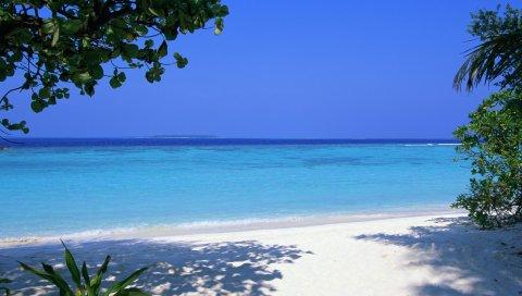 Мальдив, тропический, пляж, песок, пальмы, море
