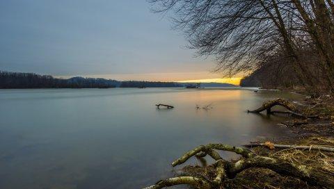 лес, река, коряги, вечер, закат